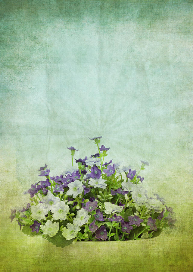 Old Grunge Paper Flowers Pattern Photograph  - Old Grunge Paper Flowers Pattern Fine Art Print