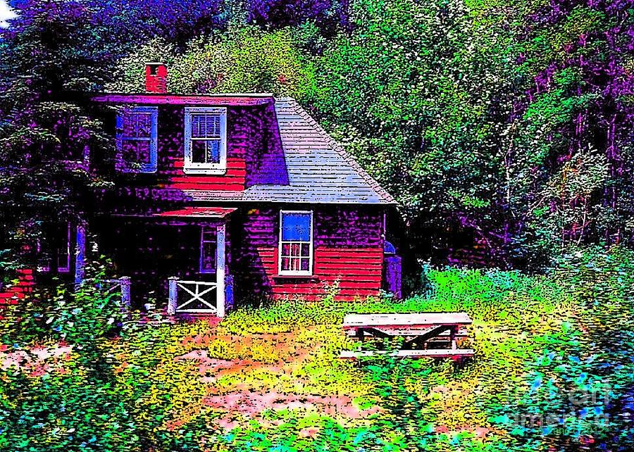 Old House In The Woods II Pen And Ink Photograph  - Old House In The Woods II Pen And Ink Fine Art Print