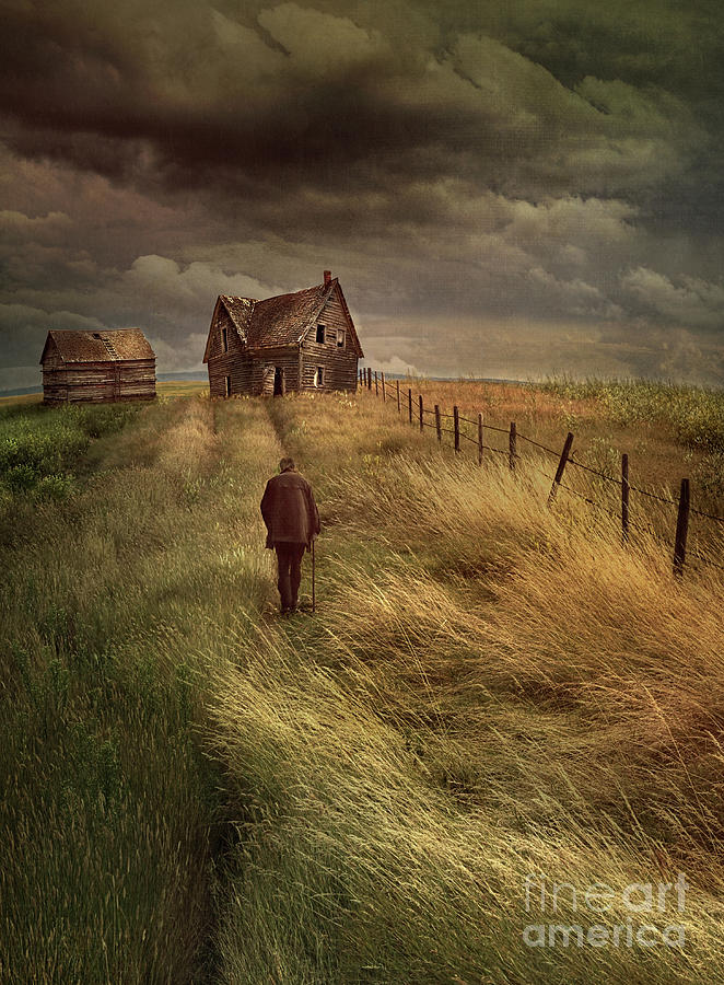 Old Man Walking Up A Path Of Tall Grass With Abandoned House In  Photograph