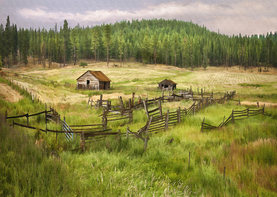 Old Montana Homestead Digital Art  - Old Montana Homestead Fine Art Print