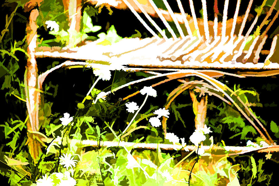 Old Rattan Chair Photograph  - Old Rattan Chair Fine Art Print
