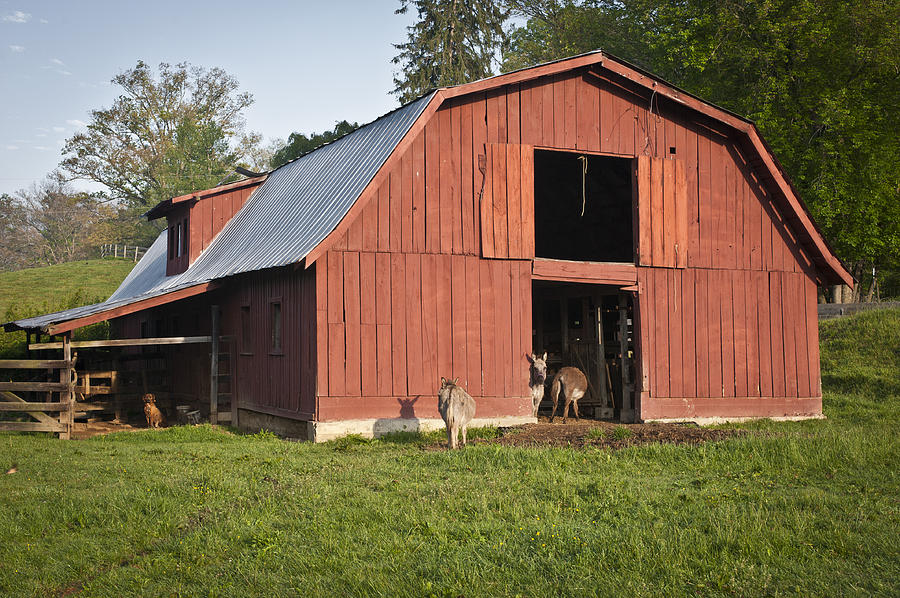 Old Red Barn is a photograph by Wayne Denmark which was uploaded on ...