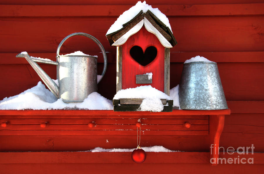 Bird Photograph - Old Red Birdhouse by Sandra Cunningham