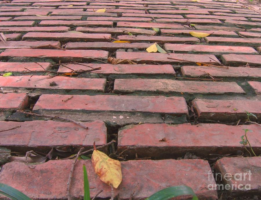Old Red Brick Road Photograph