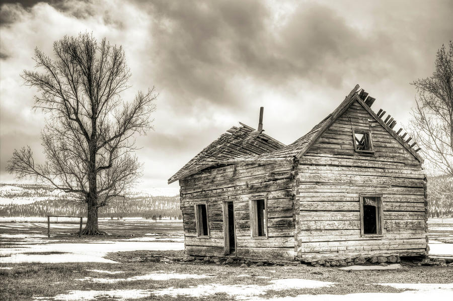 Old Rustic Log House In The Snow Photograph  - Old Rustic Log House In The Snow Fine Art Print