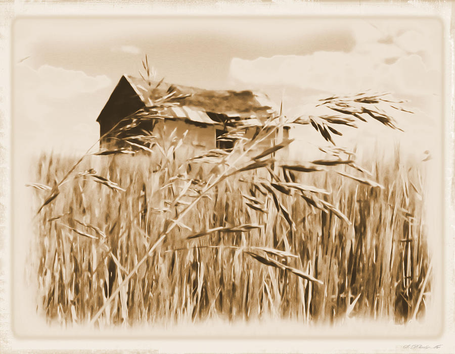 Old Shanty On The Prairie Os2 Digital Art