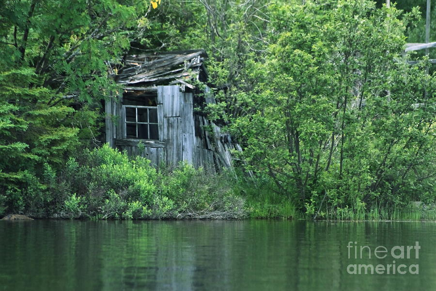 Old Shed On The Lake Photograph
