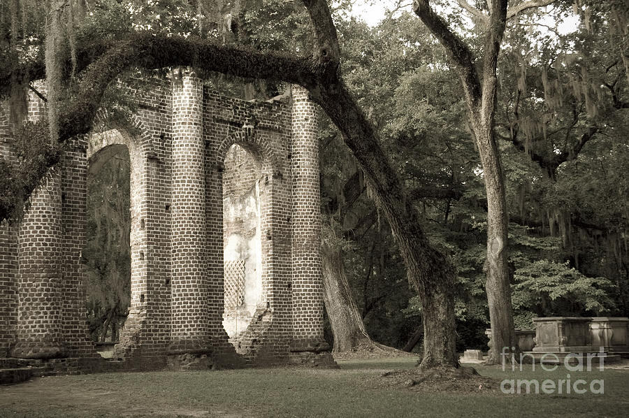 Old Sheldon Church Photograph  - Old Sheldon Church Fine Art Print
