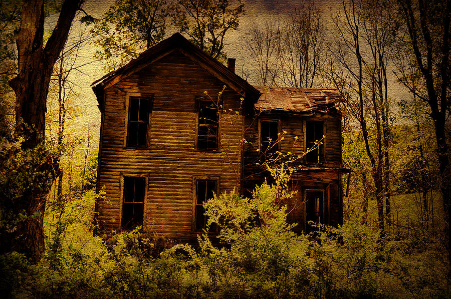 Abandoned House Photograph - Old Stories by Emily Stauring