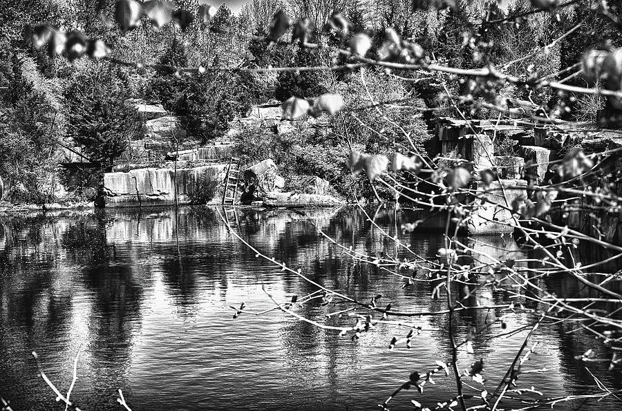 Water Photograph - Old Swimmin Hole In B And W by William R Graam