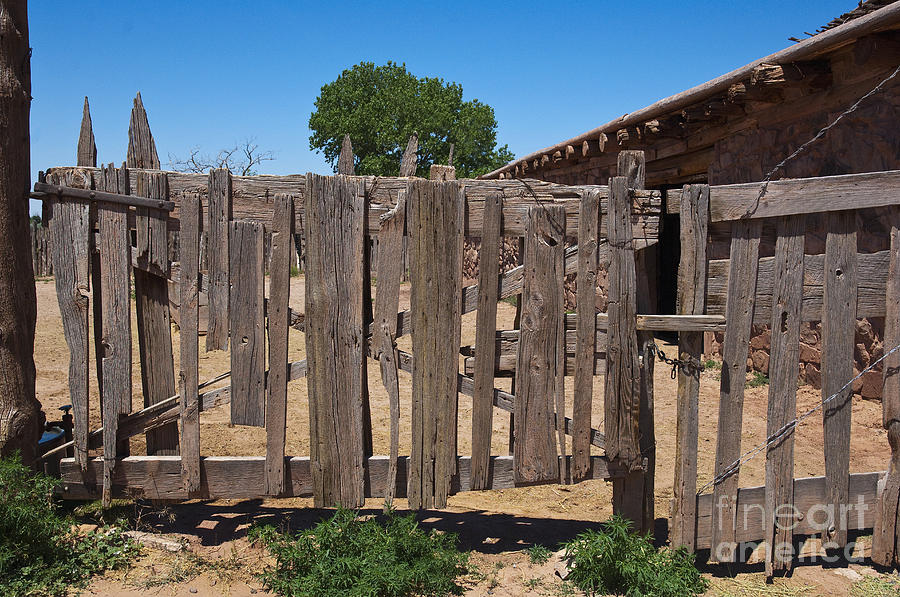 Old Wooden Fence Gate Photograph  - Old Wooden Fence Gate Fine Art Print