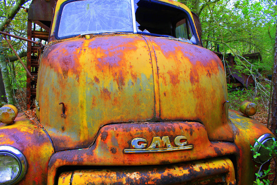 Ole Rusty Full Frontal Photograph  - Ole Rusty Full Frontal Fine Art Print