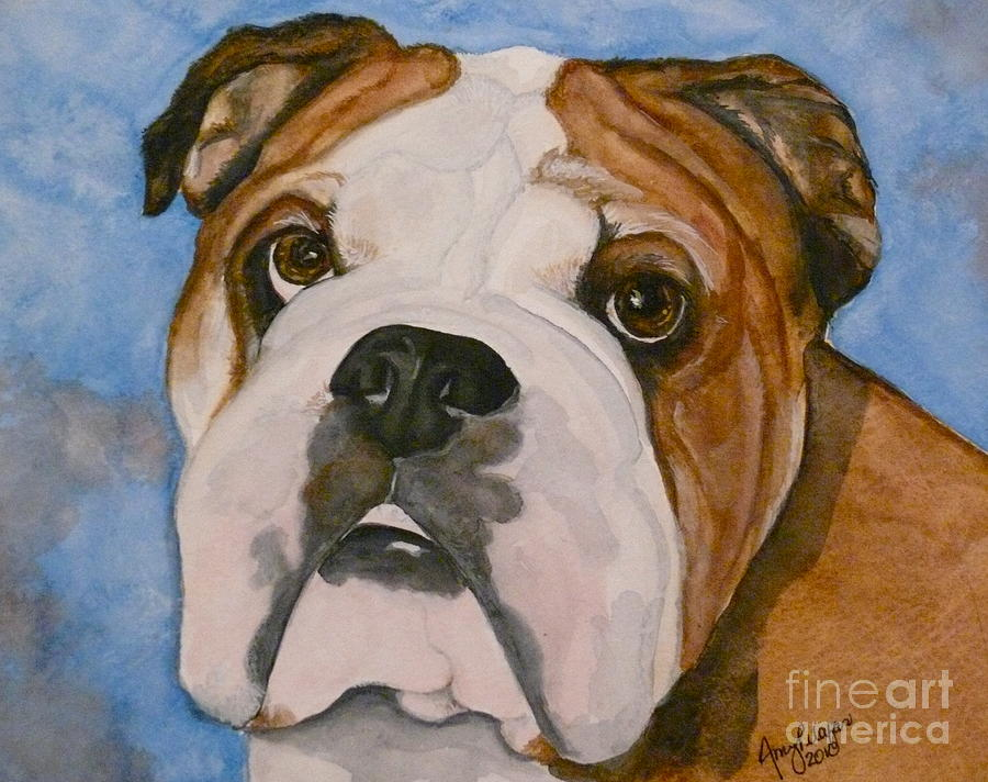 Oliver The English Bulldog by Amy Pilafas