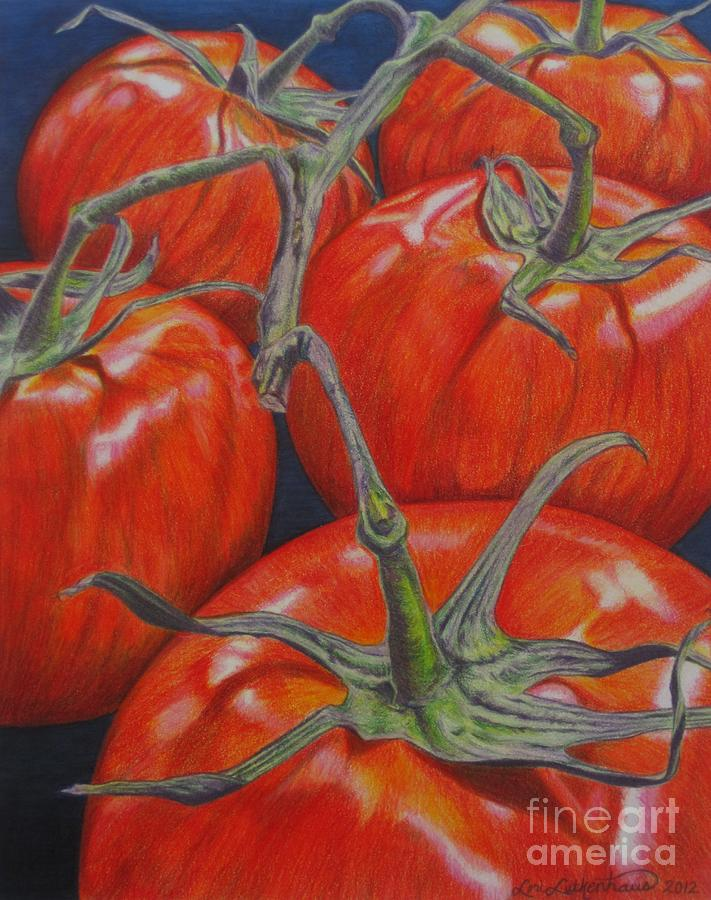 Tomato Drawing - On The Vine by Lori Lutkenhaus