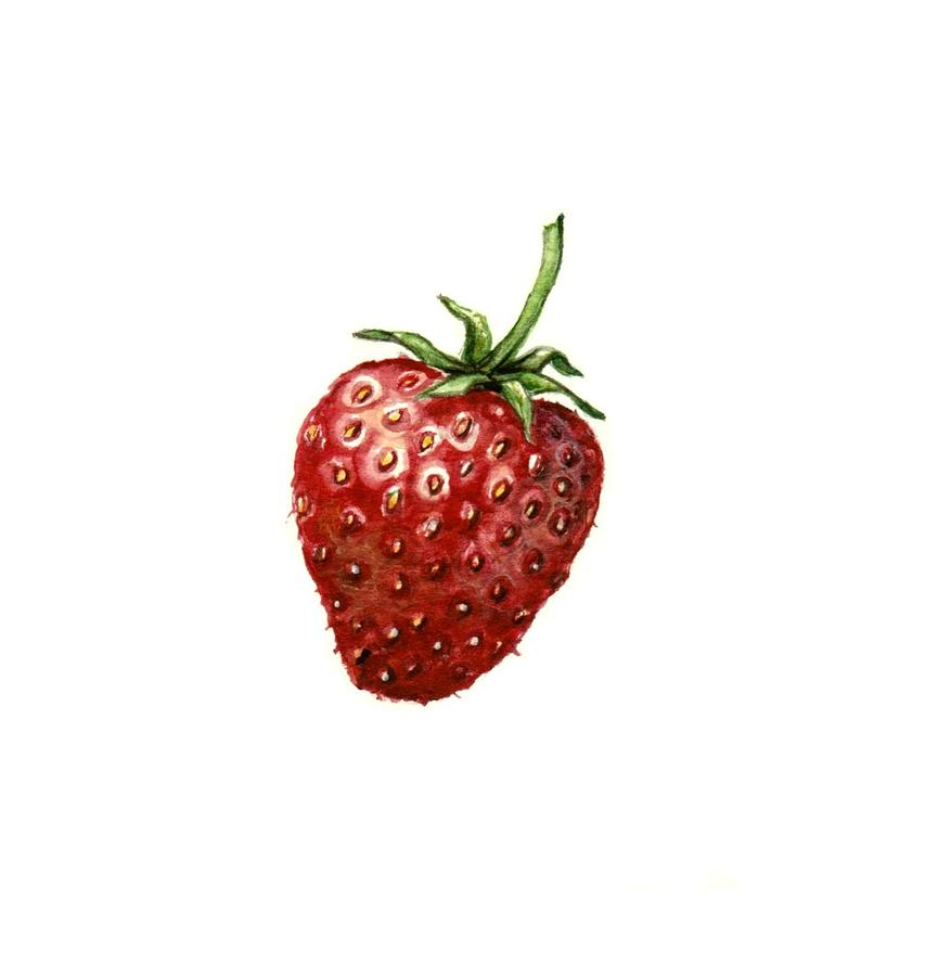 One Strawberry Painting  - One Strawberry Fine Art Print