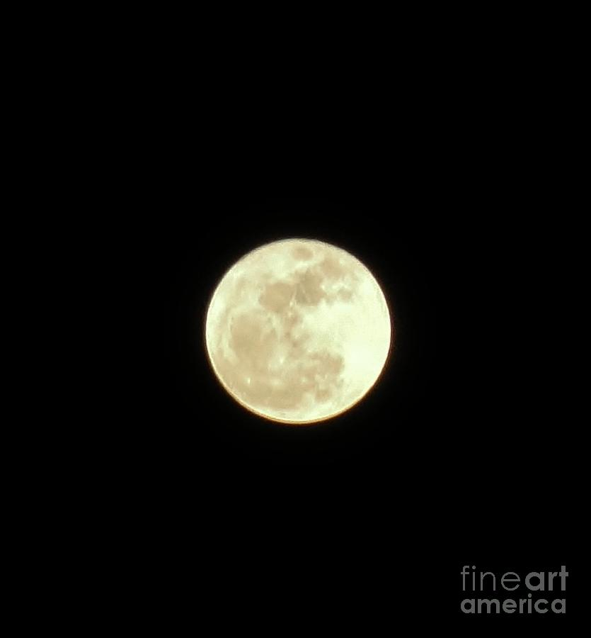 Only The Moon Photograph  - Only The Moon Fine Art Print