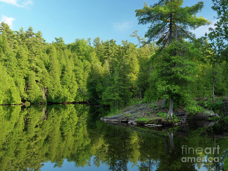 Ontario Nature Scenery Photograph