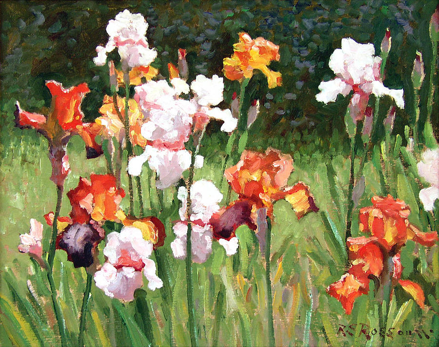 Orange And White Irises Painting  - Orange And White Irises Fine Art Print