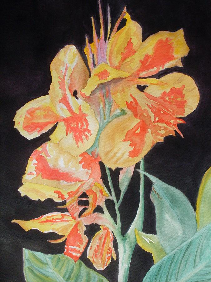 Orange And Yellow Canna Lily On Black Painting  - Orange And Yellow Canna Lily On Black Fine Art Print