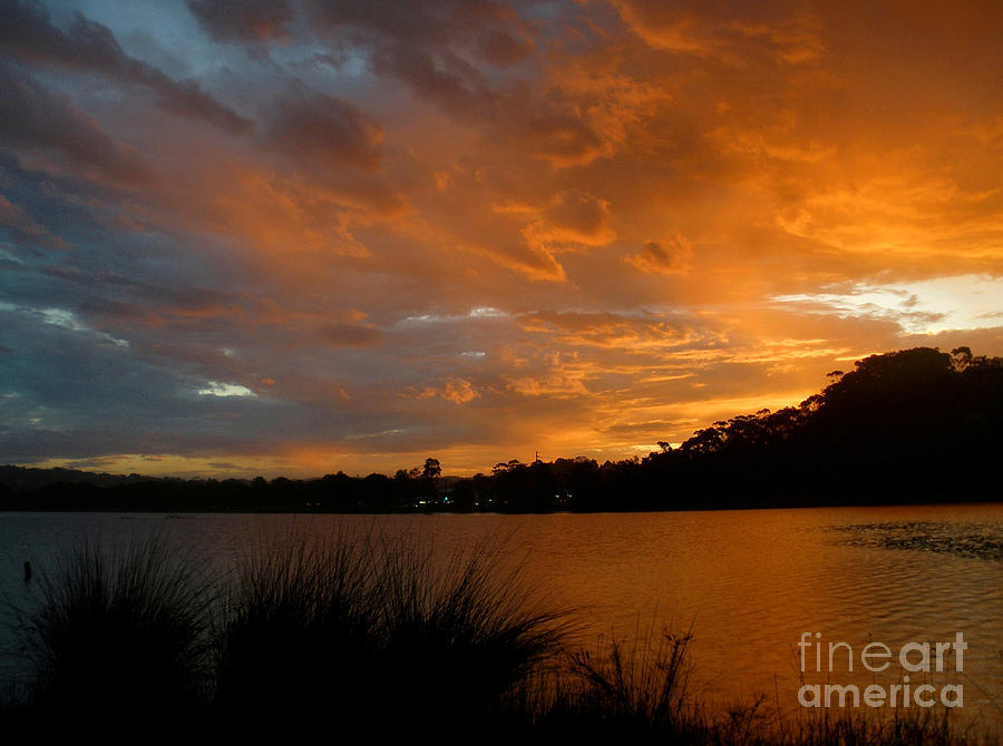 Orange Sunset Glow Photograph  - Orange Sunset Glow Fine Art Print