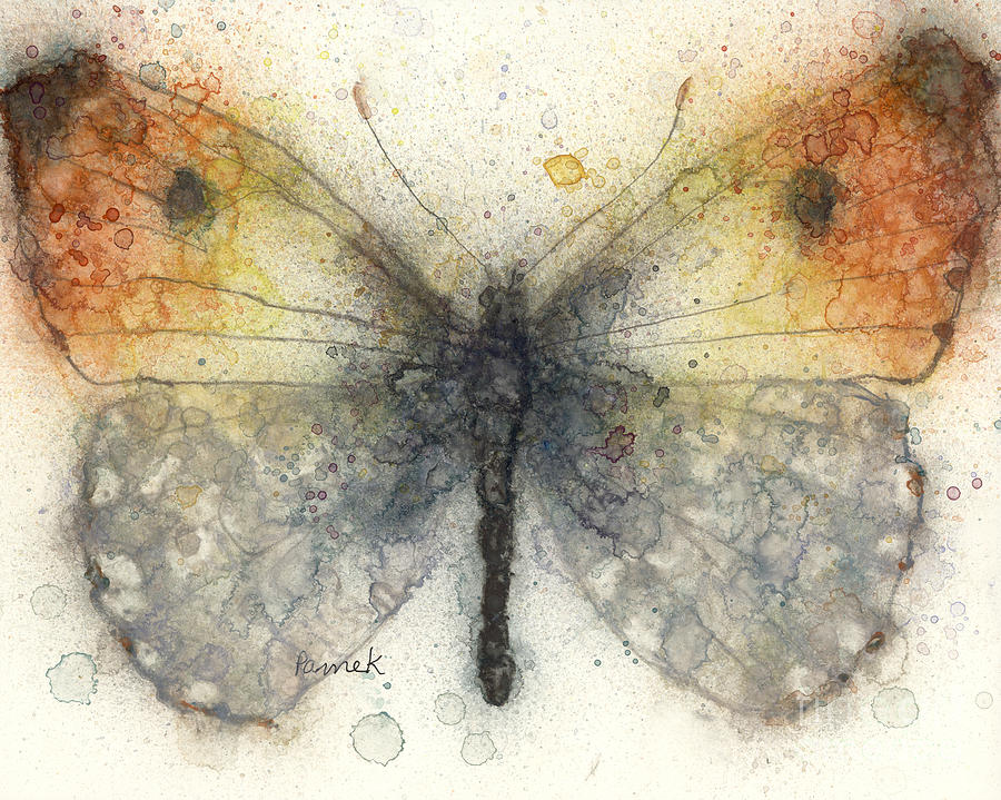 Orange Tip Butterfly Painting