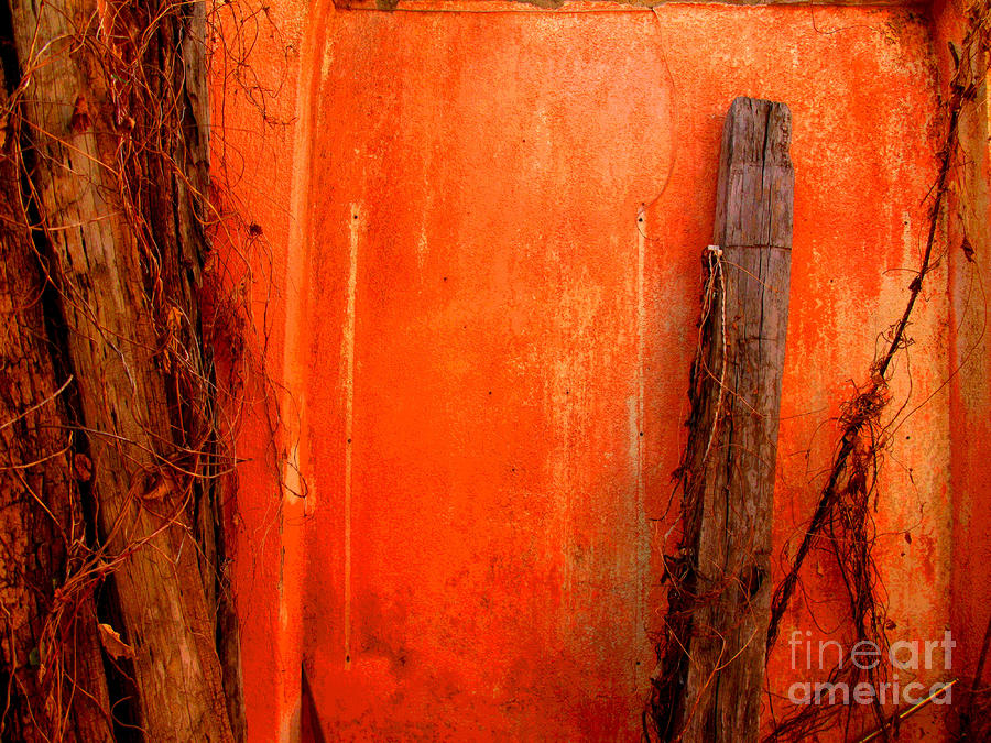 Orange Wall By Michael Fitzpatrick Photograph
