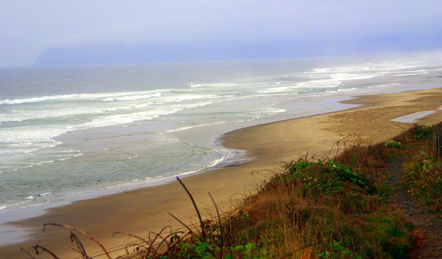 Oregon Coast 3 Photograph  - Oregon Coast 3 Fine Art Print