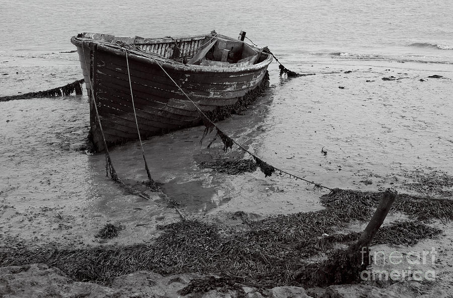 Orford Photograph - Orford Wreck by Darren Burroughs