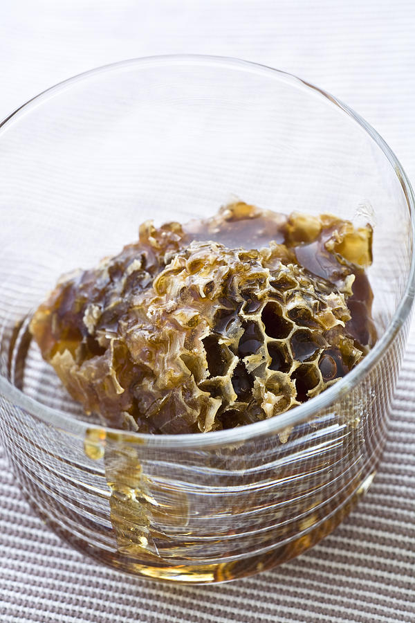 Organic Honey Comb Photograph