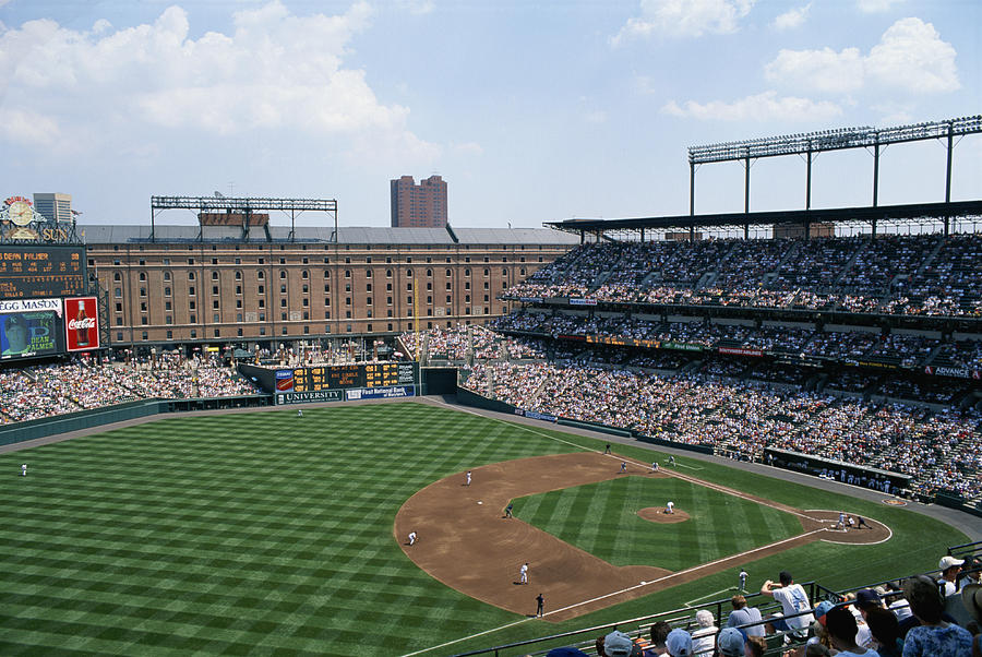 Orioles Park. Kansas City Royals Photograph