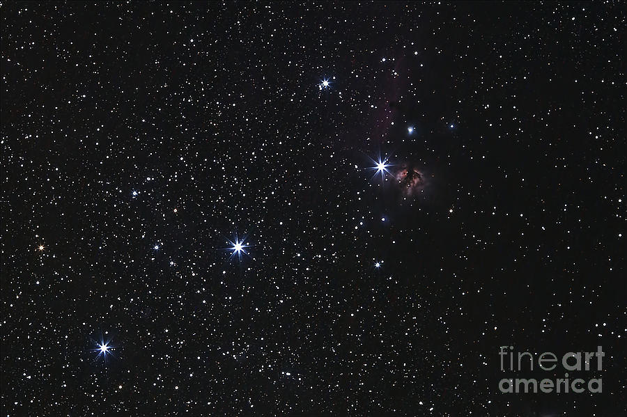 Orions Belt, Horsehead Nebula And Flame Photograph  - Orions Belt, Horsehead Nebula And Flame Fine Art Print