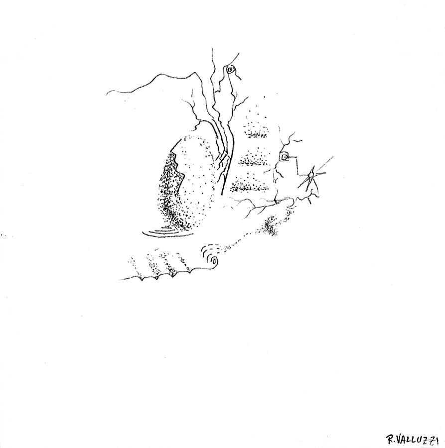 Ovoid Landscape Drawing