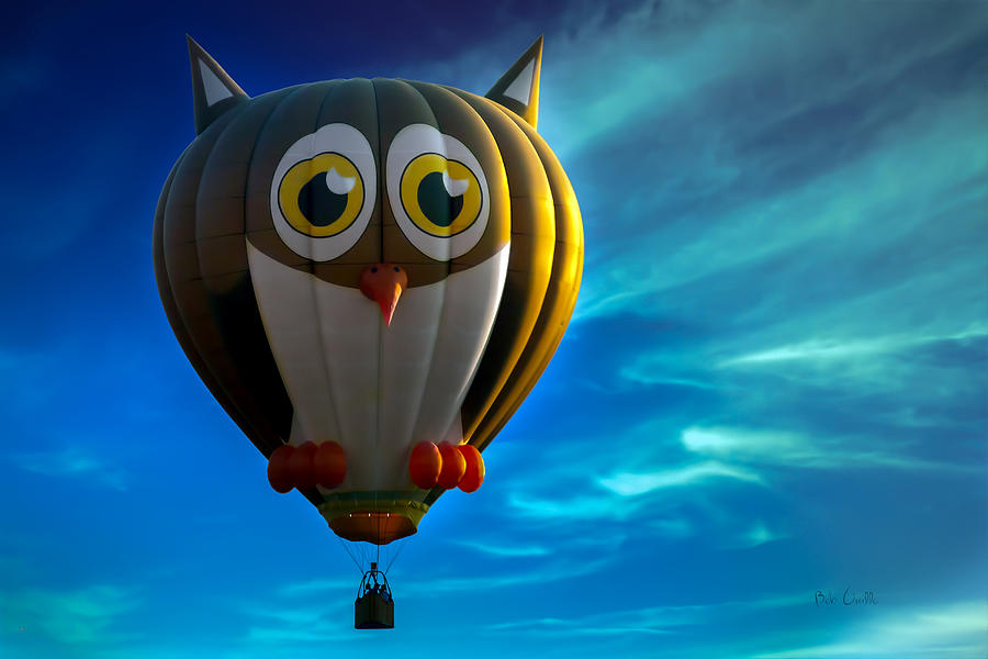 Owl Hot Air Balloon Photograph