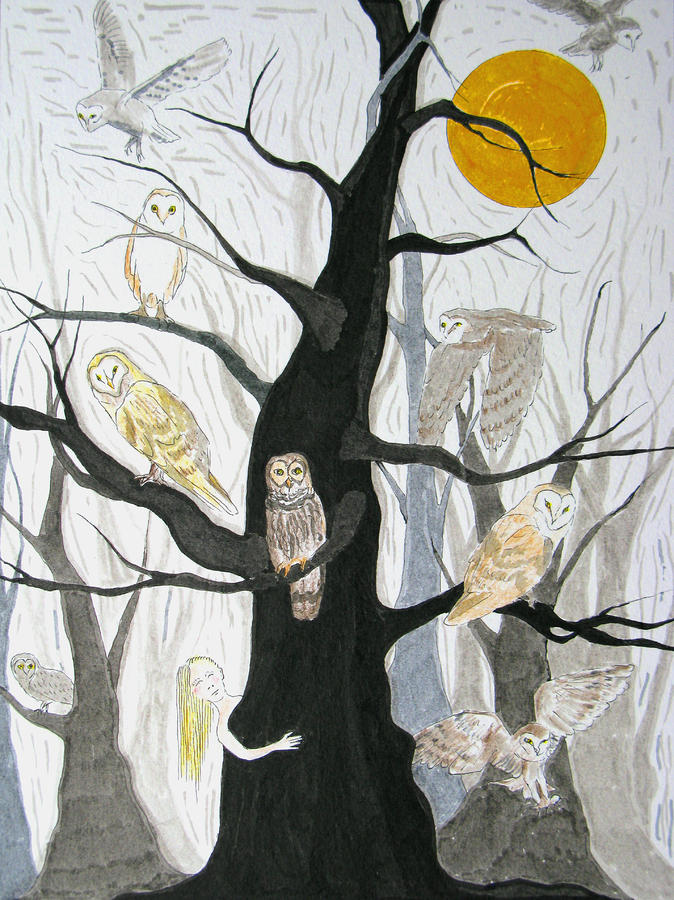 Owl Wood Drawing  - Owl Wood Fine Art Print