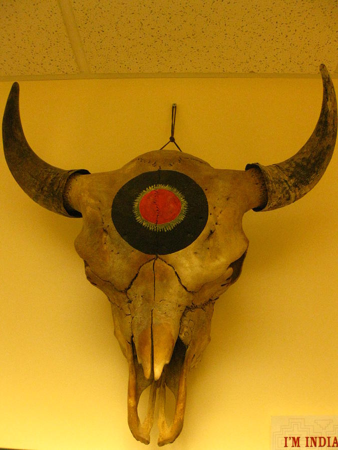 Painted Bison Skull Sculpture