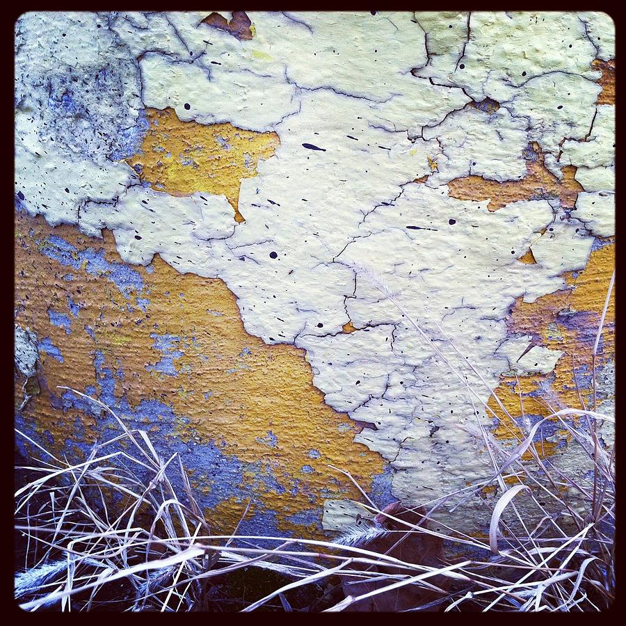 Chipping Paint Photograph - Painted Concrete Map by Anna Villarreal Garbis