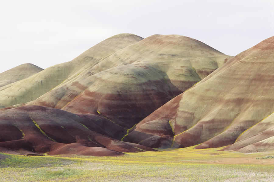 Painted Hills Photograph  - Painted Hills Fine Art Print