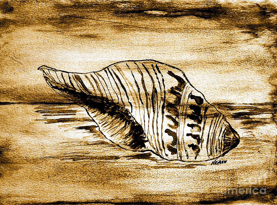 Painted Seashell Painting  - Painted Seashell Fine Art Print