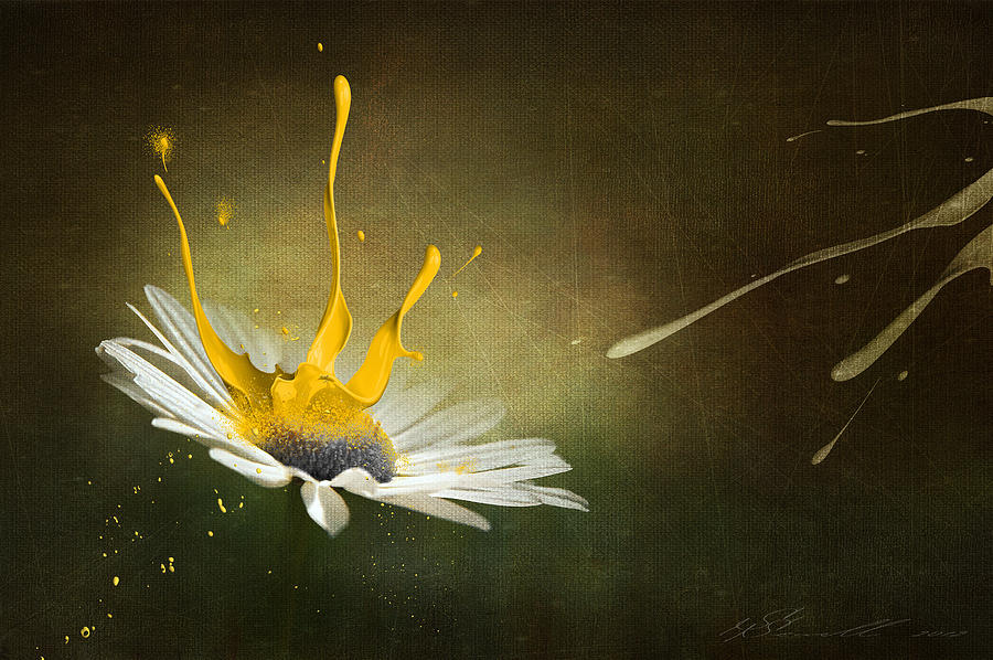Painting Daisy Digital Art  - Painting Daisy Fine Art Print