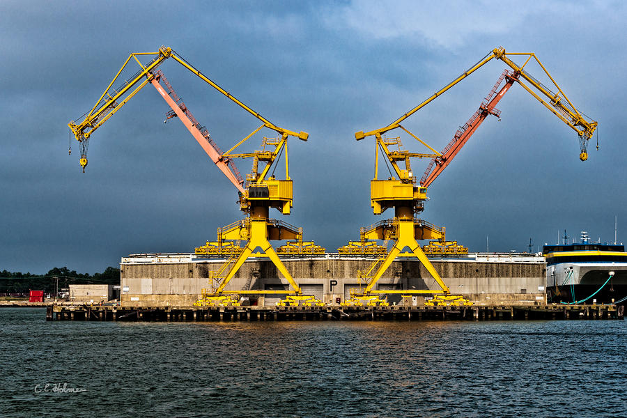 Pair Of Cranes Photograph