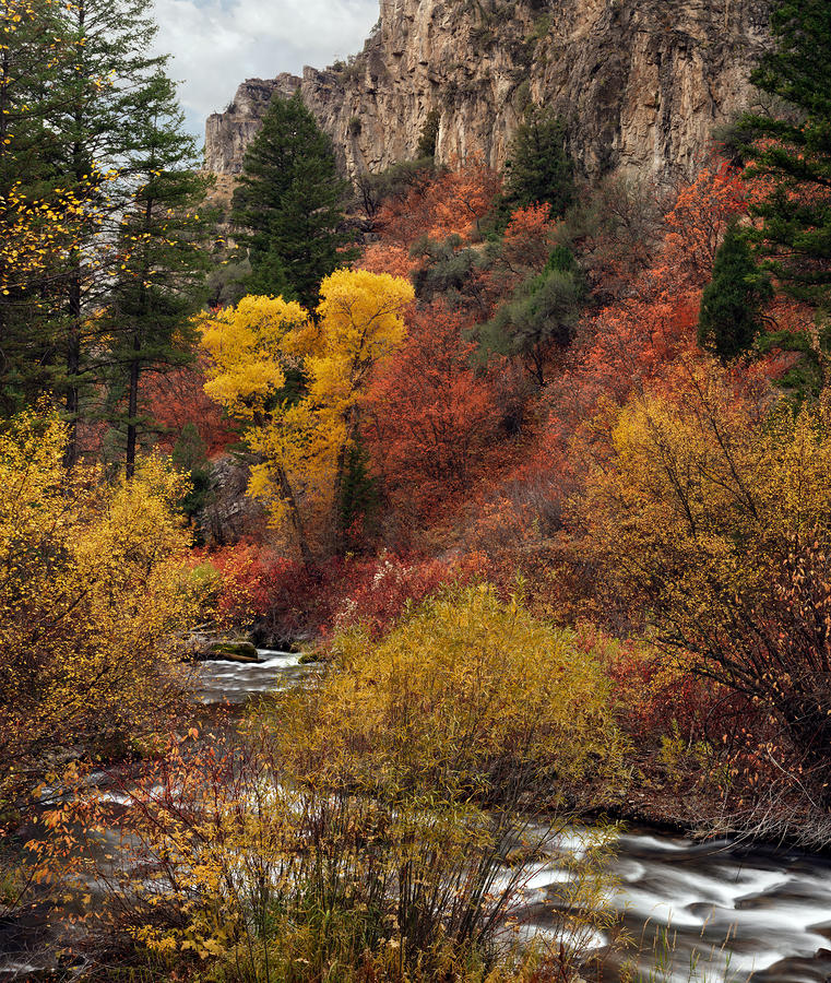 Palisades Creek Canyon Photograph  - Palisades Creek Canyon Fine Art Print