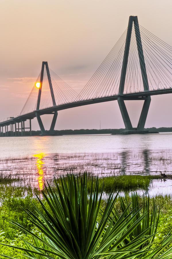 Palm Harbor Sunset - Charleston Sc Photograph
