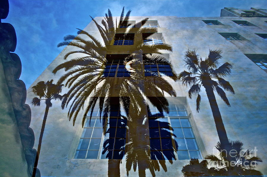 Palm Mural Mixed Media  - Palm Mural Fine Art Print