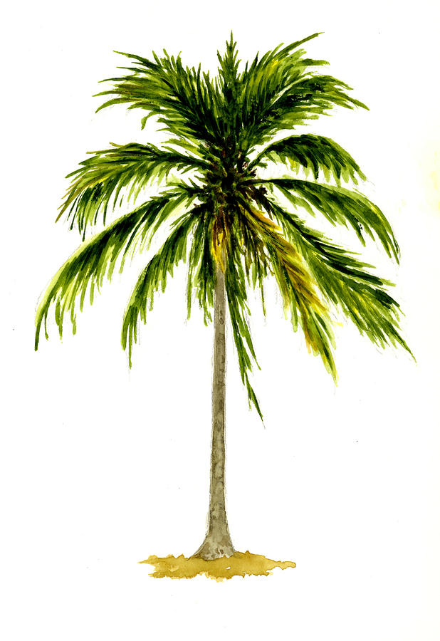 Palm tree number 2 by michael vigliotti for Palm tree painting