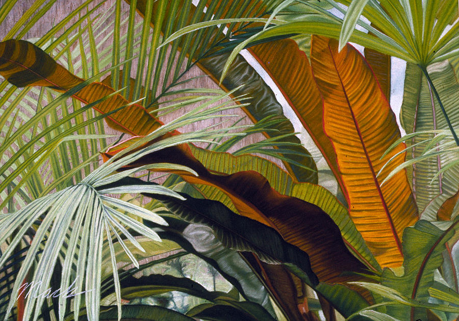 Palms At Fairchild Gardens Pastel
