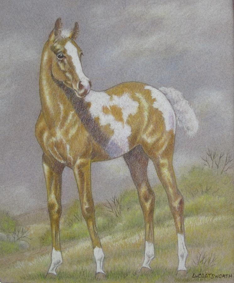 Palomino Paint Foal Pastel