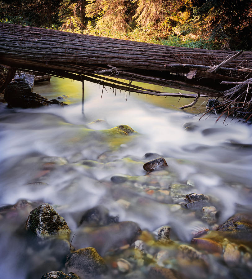 Papoose Creek Photograph  - Papoose Creek Fine Art Print