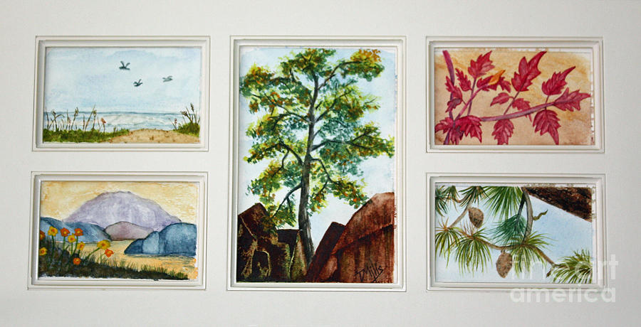 Parcels Of Nature Painting