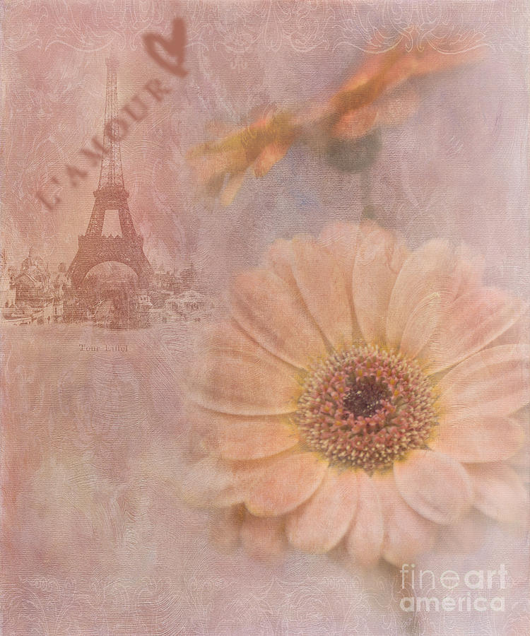 Gerbera Daisy Photograph - Parisian Oooo La La by Betty LaRue