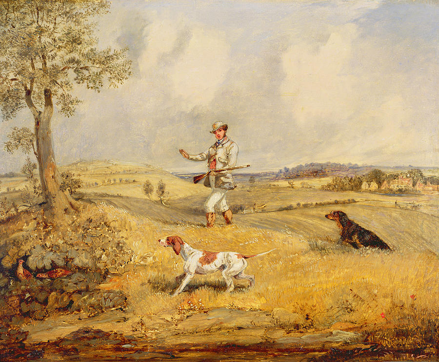 Partridge Shooting  Photograph